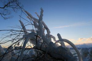 フィールドワークでの視察・自然現象しぶき氷